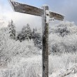 Blank signpost in winter landscape — ストック写真