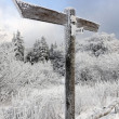 Blank signpost in winter landscape — Stock Photo