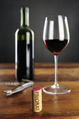 Priorat Cork and red Wine — 图库照片