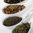 Different sorts of green tea — Stock fotografie
