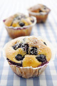 Blueberry Muffins — Stock Photo