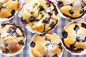 Blueberry Muffins — Stock fotografie