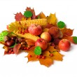 Autumn harvest isolated on white background — Stock Photo