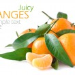 Juicy oranges isolated on white background — Stock Photo #19012061