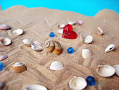 Sea shells and heart — Stock Photo