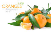 Juicy oranges isolated on white background — Stock Photo