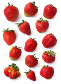 Strawberry set — Stock Photo