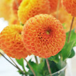 Orange dahlias bouquet — Stock Photo #23247902