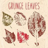 Grunge fallen leaves texture — Stock Photo