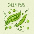 Green Peas — Stock Vector #27792331