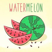 Wassermelone-vektor-illustration — Stockvektor