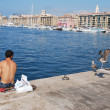 A flock of seagulls near the fish market in the old port of Marseille. — Stock Photo