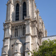 Notre Dame cathedral from Seine — Stock Photo