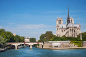 Notre Dame cathedral — Foto Stock