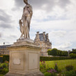 Jardin de Tuileries in Paris city — Stock Photo #32521639