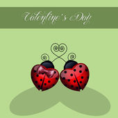Ladybugs in love — Stock Photo
