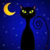 Cat at the moonlight — Stock Photo