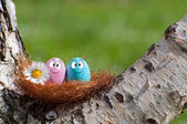 Couple of eggs in the nest for Easter — Photo