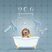 Dog In Bath For Grooming — Stock Photo
