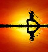 Shaolin pose vid solnedgången — Stockfoto