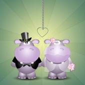 A couple of hippos spouses — Stock Photo