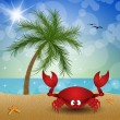 Funny crab on the beach — Stock Photo #49917555
