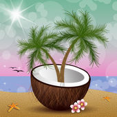 Coconut with palms on the beach — Stock Photo