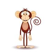 śmieszne małpy — Zdjęcie stockowe