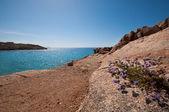 Kalafatis Beach In Mykonos — Stock Photo