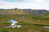 Summer polar landscape with small river — Stock Photo