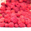 Stock Photo: Garden raspberry