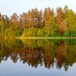 Landscape on the lake Elchinsky — Stock Photo