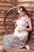 The pregnant woman on hay — Stock Photo