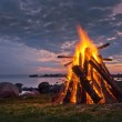Bonfire — Stock Photo #19003957
