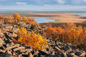 View from the top of a mountain over Lapland landscape in autumn — Stock Photo