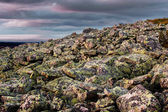 Granite rock mountain in Lapland — Stock fotografie