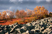 Lapland highlands in autumn — Stock Photo