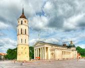 Vilnius Cathedral — Stock Photo