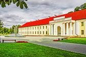 Museo Nazionale di Lituania — Foto Stock