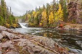 Flowing Lapland mountain river in autumn — Stock Photo