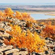 Stock Photo: Picturesque Lapland landscape