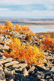 Picturesque Lapland landscape — ストック写真