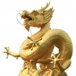 Golden dragon statue at isolated on white background  — Stock Photo