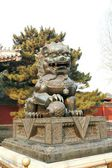 Bronze Guardian Lion Statue in the Forbidden City, Beijing, China . — Stock Photo