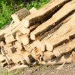 Royalty-Free Stock Photo: Stacked Logs