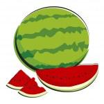 Watermelon — Stock Vector #24760303