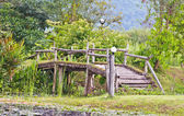 Bamboo bridge — Photo