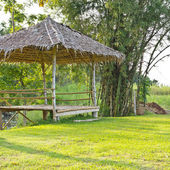 Casa no jardim — Foto Stock