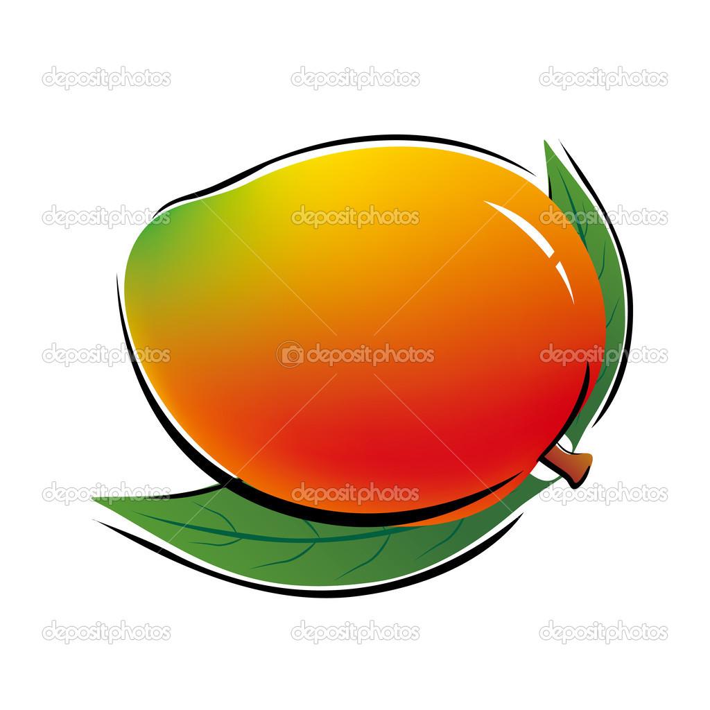在白色背景上的芒果 — 矢量图片作者 myimagine