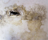 Water damaged ceiling for background — Stock Photo